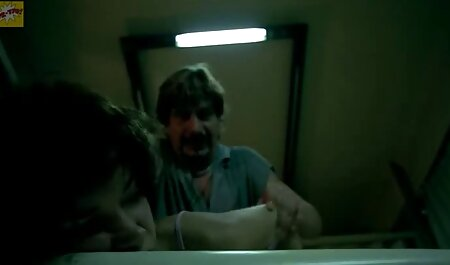דוגי צפייה ישירה סרטי סקס סטייל במסדרון.
